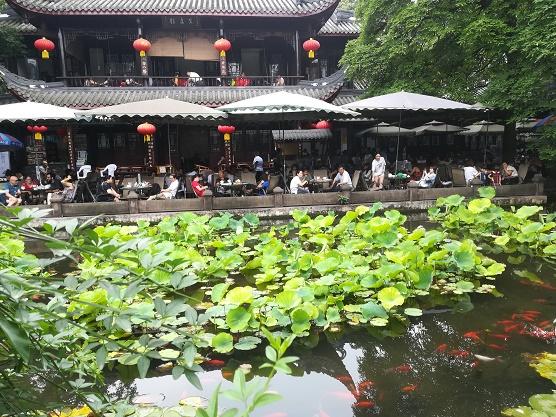 theehuis met vijver in Chengdu